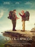 Affiche de A Walk in the Woods