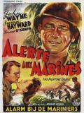 Affiche de Alerte aux marines