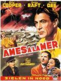 Affiche de Ames à la mer