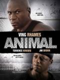 Affiche de Animal