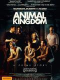 Affiche de Animal Kingdom