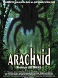 Affiche de Arachnid