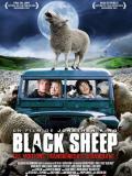 Affiche de Black Sheep