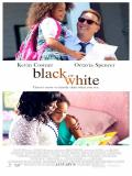Affiche de Black or White