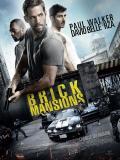 Affiche de Brick Mansions
