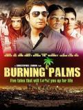 Affiche de Burning Palms