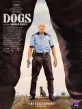 Affiche de Dogs