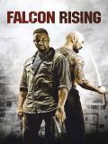 Affiche de Falcon Rising