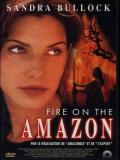 Affiche de Fire on the Amazon