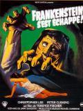 Affiche de Frankenstein s