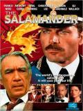 Affiche de La Salamandre