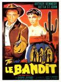 Affiche de Le Bandit