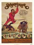 Affiche de Le Pirate des Caraïbes