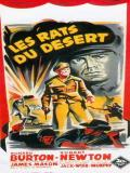 Affiche de Les Rats du désert