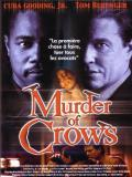 Affiche de Murder of Crows