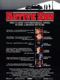 Affiche de Native son