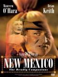 Affiche de New Mexico