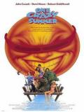Affiche de One Crazy Summer