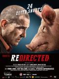 Affiche de Redirected