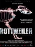 Affiche de Rottweiler