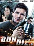 Affiche de Run or Die