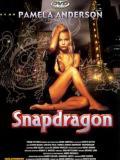 Affiche de Snapdragon