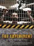 Affiche de The Experiment