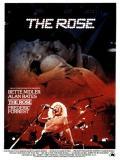 Affiche de The rose