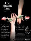Affiche de The Simian Line