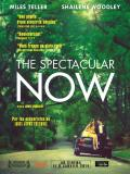 Affiche de The Spectacular Now
