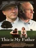 Affiche de This Is My Father