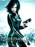 Affiche de Underworld 2 - evolution