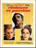 Affiche de Violence et Passion