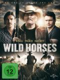 Affiche de Wild Horses