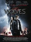 Affiche de Wolves
