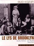 Affiche de Le Lys de Brooklyn