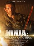Affiche de Ninja 2 : Shadow of a Tear