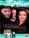 Affiche de Prince of Central Park