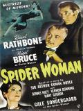 Affiche de La Femme aux araignées