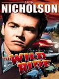 Affiche de The Wild Ride